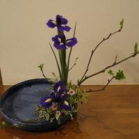 1月生け花のサムネイル