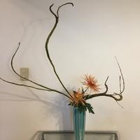 枝ぶりをいかす2のサムネイル