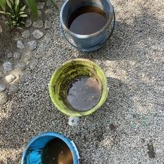 土用の灰作り